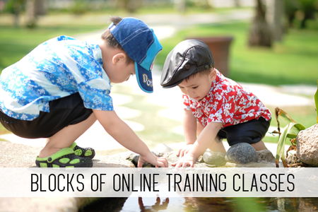 Blocks of Online Training Classes