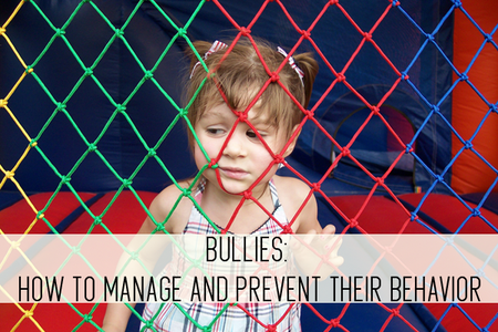bullies: how to manage and prevent their behavior online childcare class