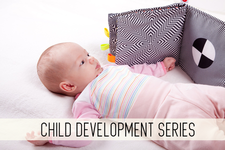 Child development series online child care classes