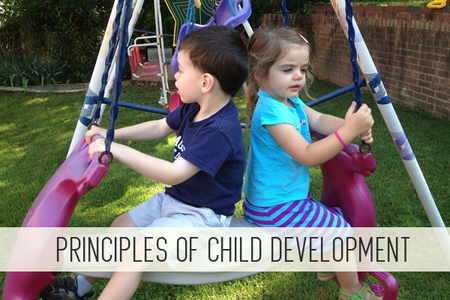 principles of child development online child care class