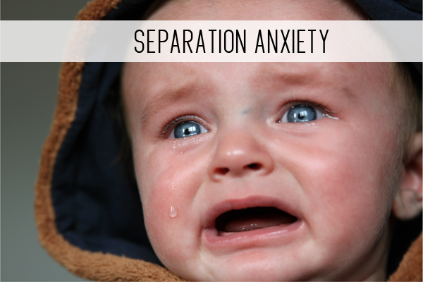 separation anxiety online child care class