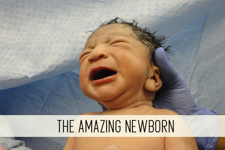 The Amazing Newborn