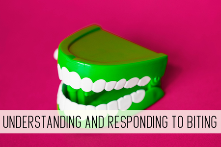 HJL2 - Understanding and Responding to Biting