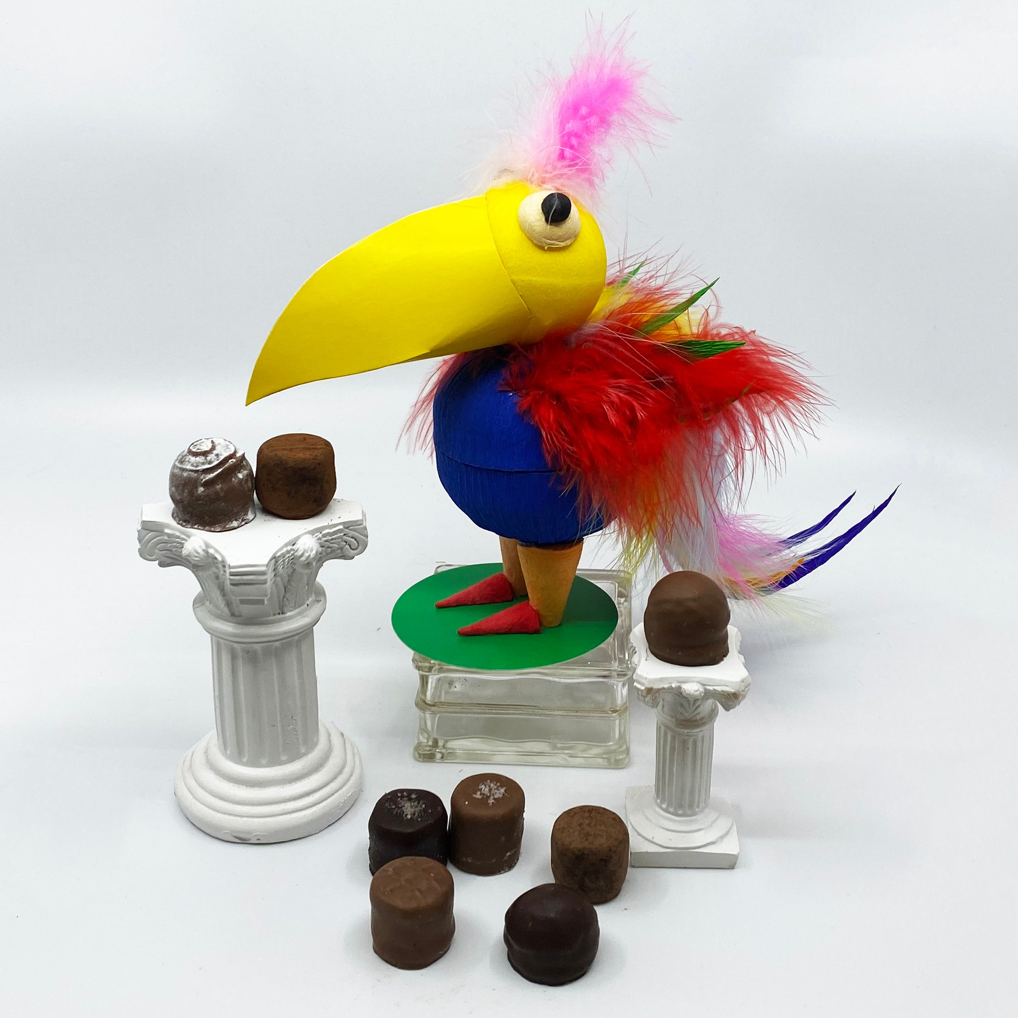 8 Piece Parrot Truffle Box