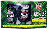 Turtles (2 Pack)