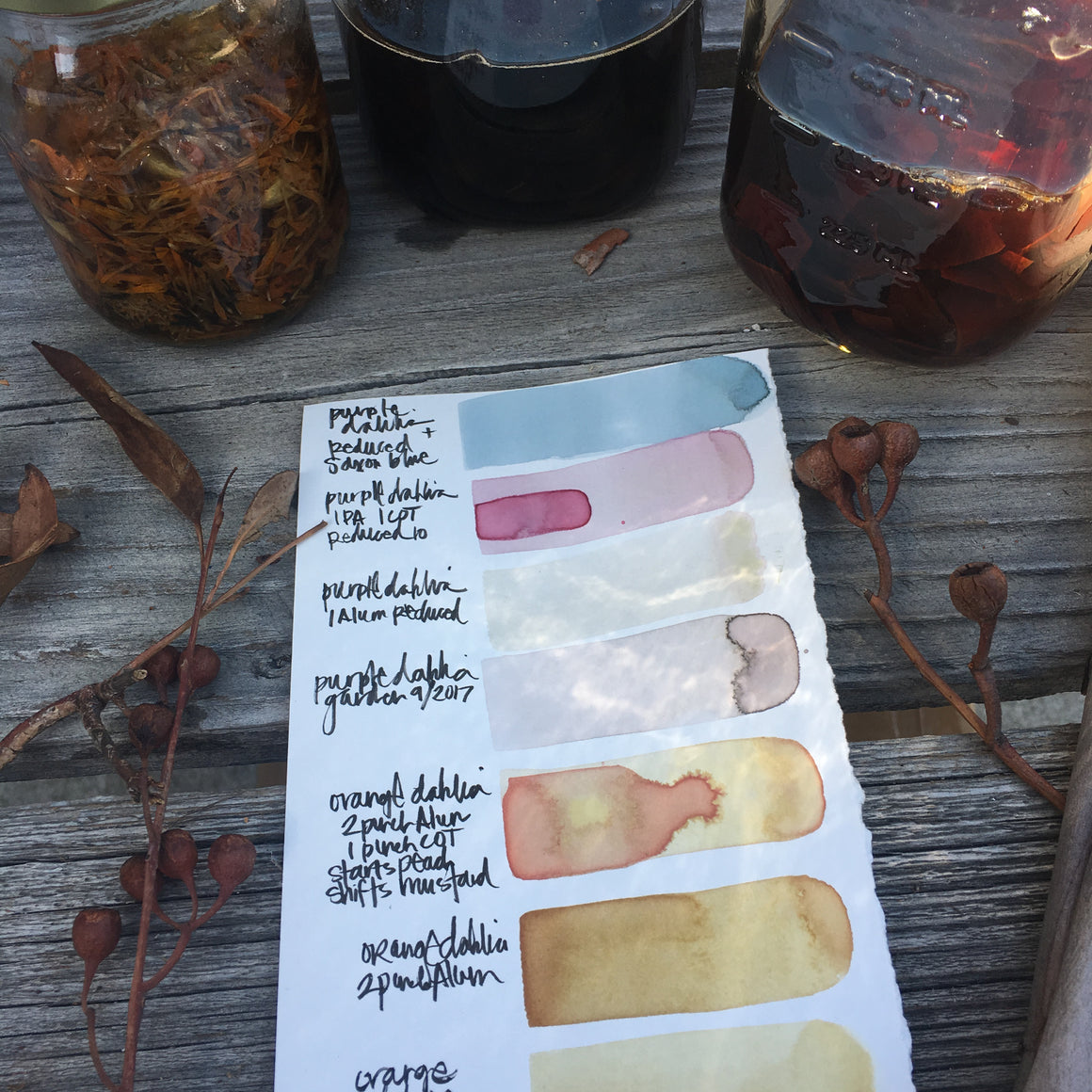 BOTANICAL wild inks {virtual workshop}