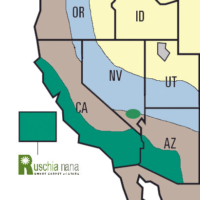 Ruschia Nana Succulent growing climates map California, Arizona, and Nevada