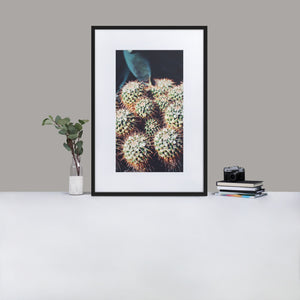 Cute but prickly framed nature photography - Elevated Oak