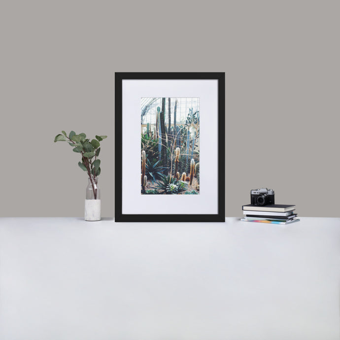 Lets stick together cactus framed nature photography - Elevated Oak