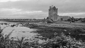 Dunguaire Castle Gardens - Tracy McCrackin Photography