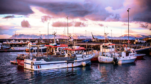 Jewel-toned Sunset Over Iceland's Harbor - Tracy McCrackin Photography