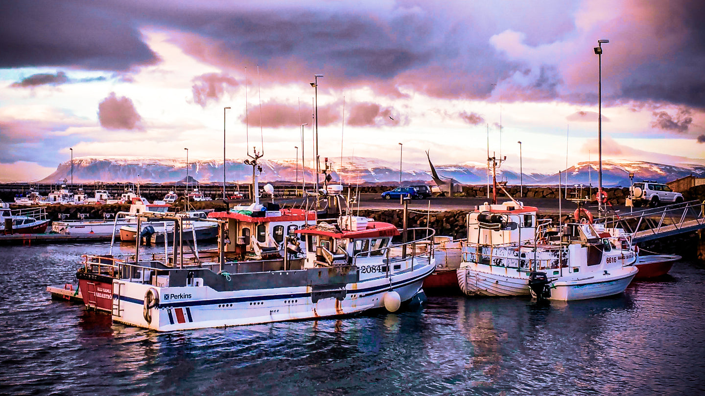 Stormy over the Icelandic Harbor - Tracy McCrackin Photography