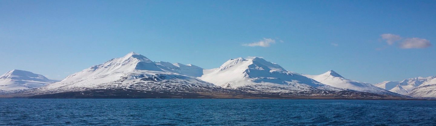 Snowcapped Mountains along Iceland's Harbor Panorama - Tracy McCrackin Photography