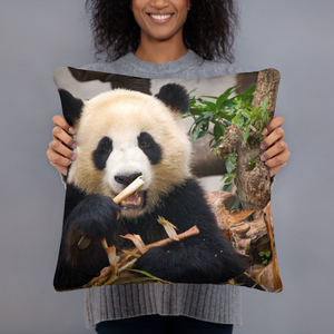 Adorable Panda Pillows - Tracy McCrackin Photography