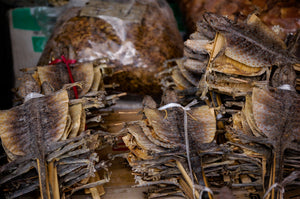 Dried Lizard to Eat in Chinese Street Market - Tracy McCrackin Photography
