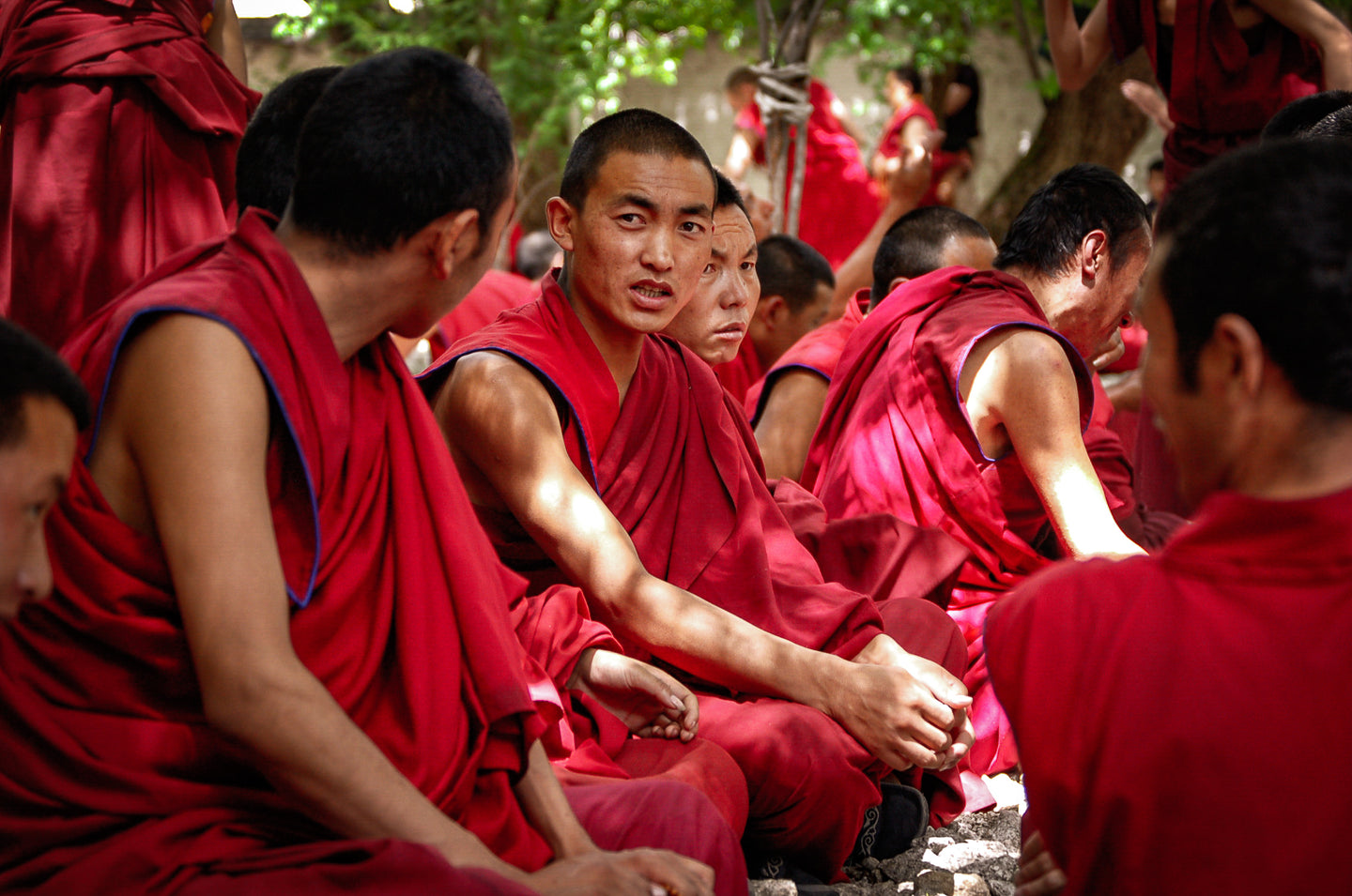 Tibetan Monk Looking Curiously