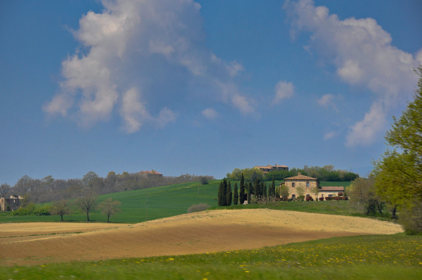 Tuscany 2 - Tracy McCrackin Photography