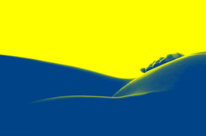 Pop Art Nude Curves - Tracy McCrackin Photography