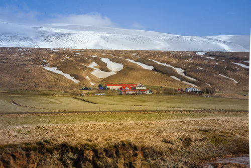 Omniscient Iceland Farm - Tracy McCrackin Photography