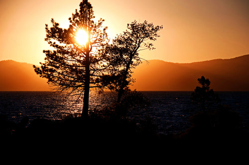 Lake Tahoe at Sunset - Tracy McCrackin Photography