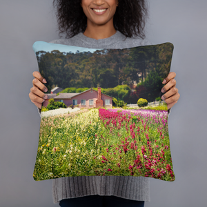 Springtime Pillows - Tracy McCrackin Photography