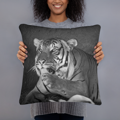 Lion's Pride Pillows - Tracy McCrackin Photography
