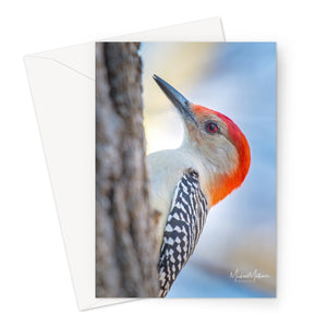Peek-a-boo Red-bellied Woodpecker Greeting Card