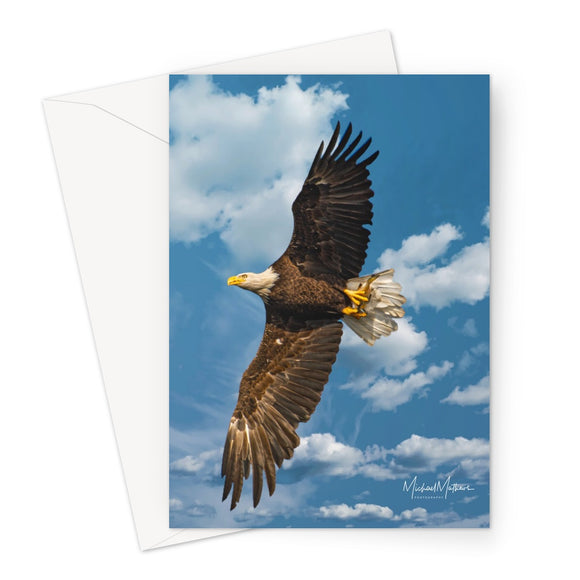 Bald Eagle With Lunch to Go Greeting Card