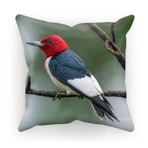 Red-headed Woodpecker on a Stick Cushion
