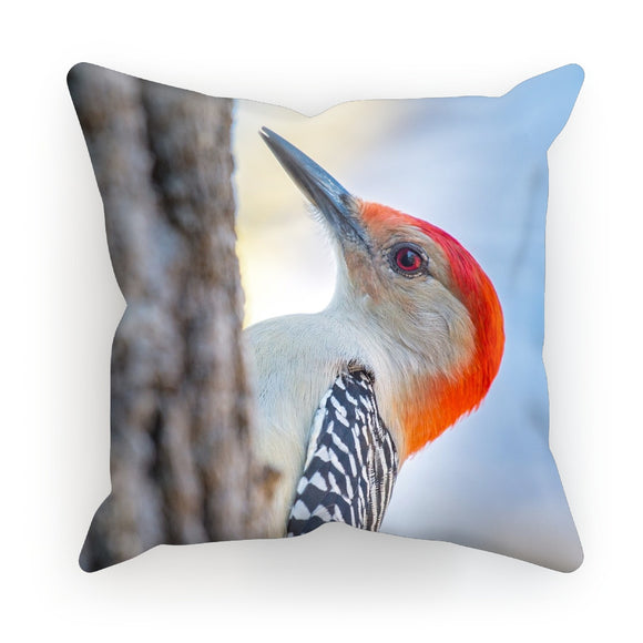 Peek-a-boo Red-bellied Woodpecker Cushion