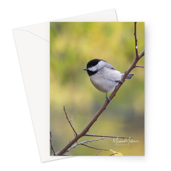 Chickadee on a Stick Greeting Card