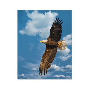 Bald Eagle With Lunch to Go Fine Art Print