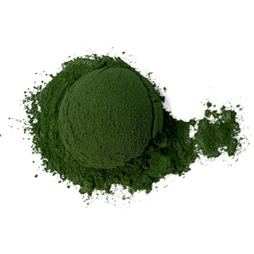 Superfood: Plants + Algae
