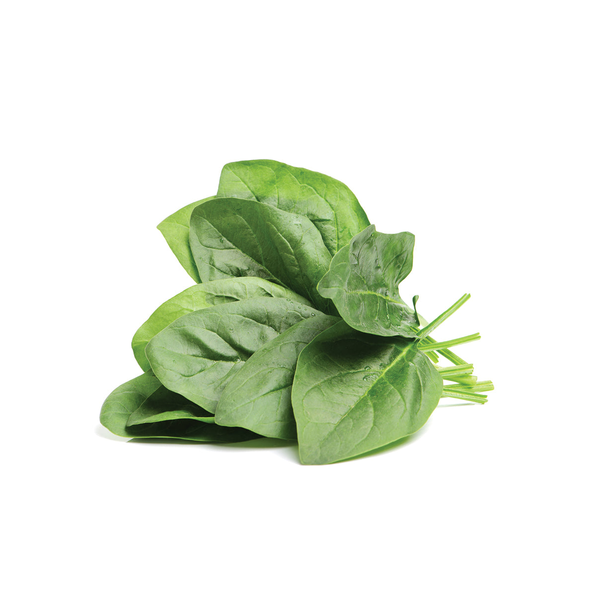All-natural spinach extract