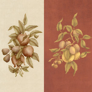 Pomegranate & Fig Botanical Fruit Stencils for Crafts and Wall Mural Art