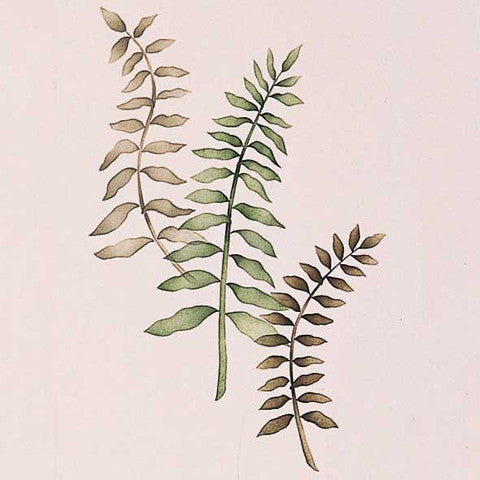 Flower Stencils | Sword Ferns Floral & Vine Wall Mural Stencil from Royal Design Studio