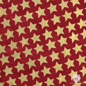 Holiday Christmas Winter Stars Craft Stencils - Royal Design Studio