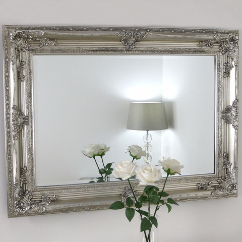 Champagne Silver Ornate Rectangular Wall Mirror