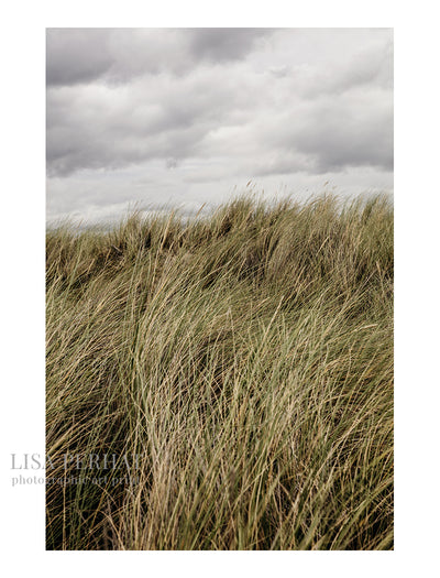 Dune - fine art print by Australian photographer Lisa Perhat