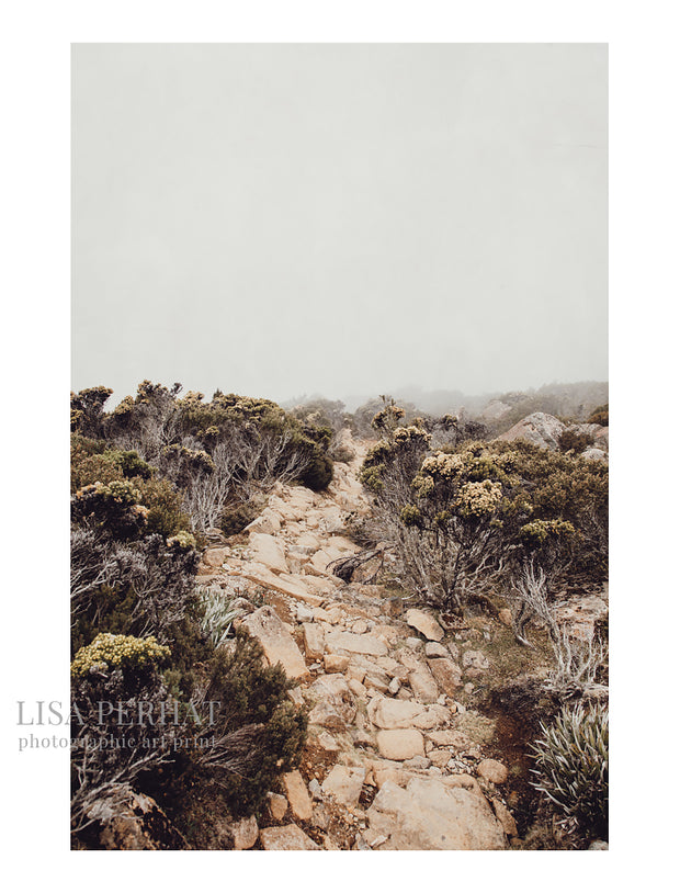 Mountain Trail - fine art print by Australian photographer Lisa Perhat