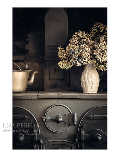 Provenance - fine art print by Australian photographer Lisa Perhat