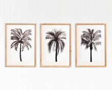 Load image into Gallery viewer, Maui Palms Framed Artwork - Set of 3