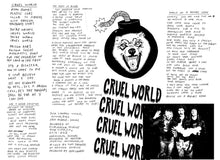 Load image into Gallery viewer, Cruel World - Test Pressing (Limited)