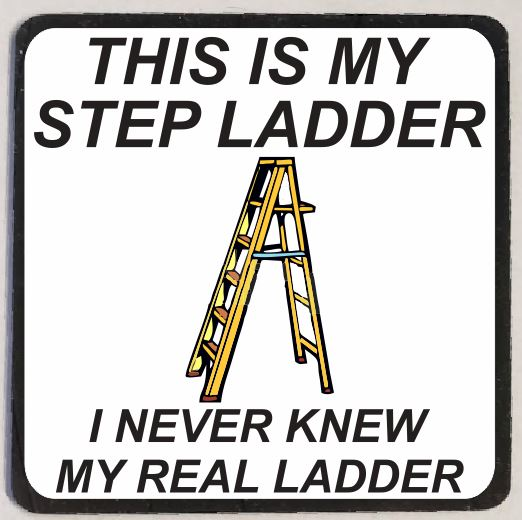 M91 My Step Ladder