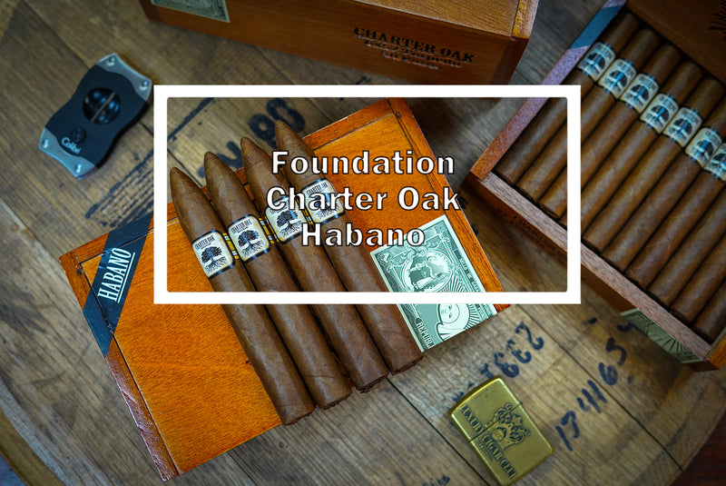Foundation Charter Oak Habano Torpedo