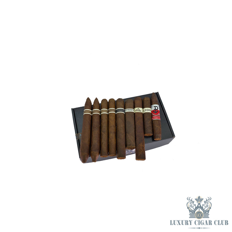 RoMa Craft Nica Sueña Limited Edition Sampler