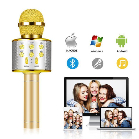 Portable Wireless Karaoke Microphone - Groupy Buy
