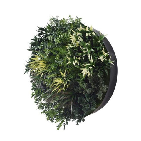 Uv Green Fields 80 Cm Green Wall Disc
