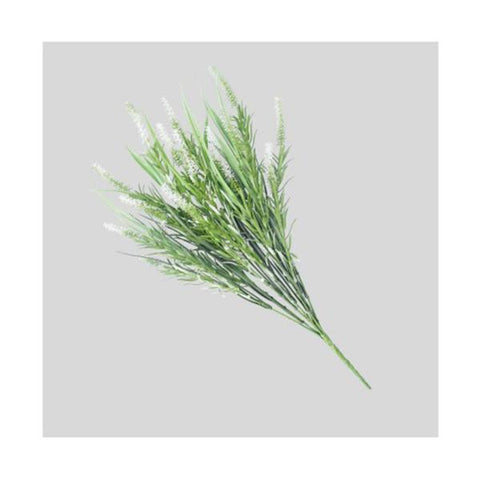 Long Stem White Lavender 50 Cm Uv Resistant