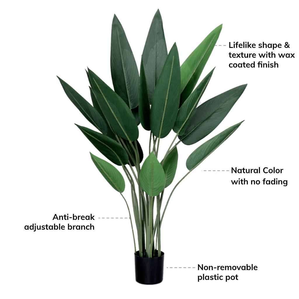 Bird of Paradise Travellers Plant Tree - Home Decor